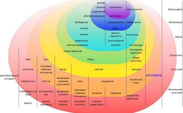 Модель разумного субъекта